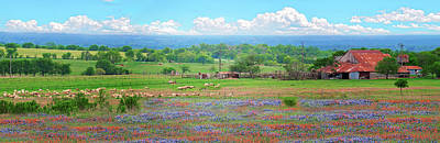 Photograph - Texas Wildflower Farmland Panorama by Lynn Bauer