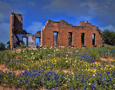 Photograph - Texas Wildflowers Among The Ruins by David and Carol Kelly