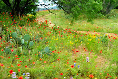 Photograph - Texas Wildflowers And Cactus - Country Road by Rebecca Korpita