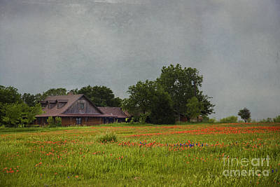 Photograph - Texas Wildflowers by Elena Nosyreva