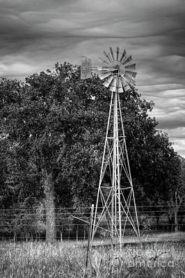 Photograph - Texas Windmill by David Cutts
