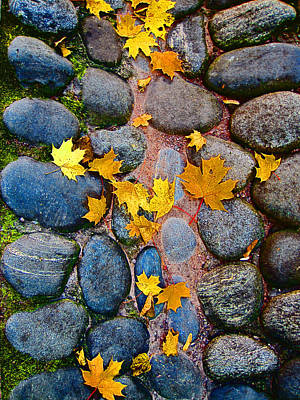 Clay Relief Photograph - Texture. Autumn. by Andy Za