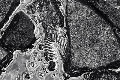 Photograph - Texture by Dawn J Benko