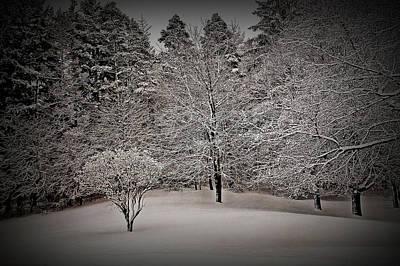 Photograph - Texture Drama Fresh Snow Scene by Aimee L Maher Photography and Art Visit ALMGallerydotcom