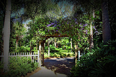 Photograph - Texture Drama Garden Walkway by Aimee L Maher ALM GALLERY