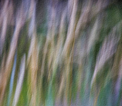 Photograph - Textured Abstract by James Woody