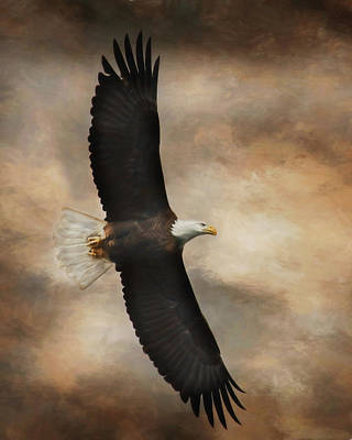 Strong America Photograph - Textured Eagle by Lori Deiter