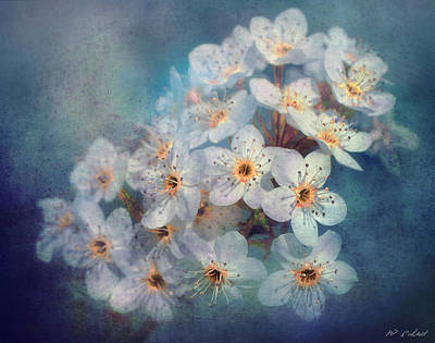 Photograph - Textured Flowers by William Schmid