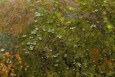 Photograph - Textured Landscape by Randy Walton