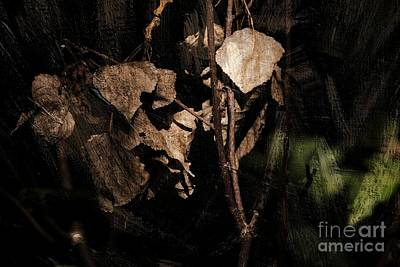 Photograph - Textured Leaves by Dariusz Gudowicz