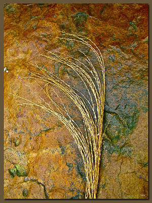 Textured Nature Art Print by Debra     Vatalaro