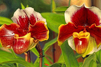 Scifi Portrait Collection - Textured orchids by Geraldine Scull