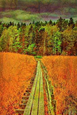 Photograph - Textured Path  #g3 by Leif Sohlman