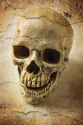 Human Head Photograph - Textured Skull by Garry Gay