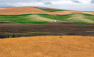 Photograph - Textures Of Idaho 1 by Nicholas Blackwell