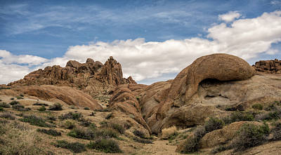 Photograph - Textures Of The Alabama Hills by Loree Johnson