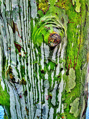 Passiflora Digital Art - Textures. The Crying Tree by Andy Za