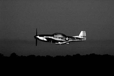 Photograph - Tf-51 Mustang by David Weeks