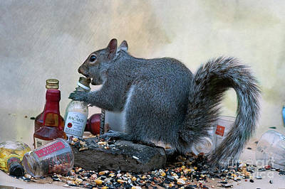 Photograph - Tgif For This Squirrel by Dan Friend