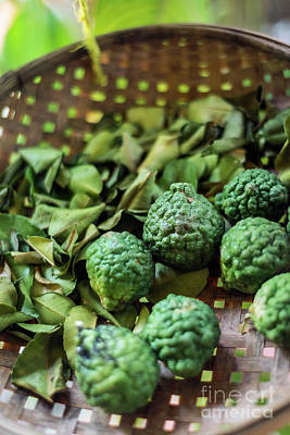 Photograph - Thai Kaffir Lime Fruit And Dried Leaves In Rustic Ingredients Ba by Jacek Malipan