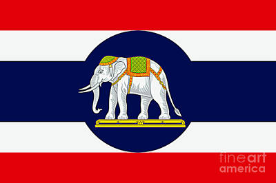 Digital Art - Thai Naval Ensign by Ian Gledhill