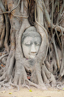 Photograph - Thailand Sculpture by Adrian Lewandowski
