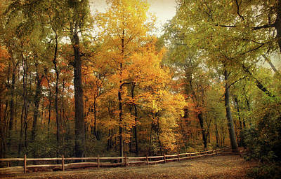 Digital Art - Thain Forest Autumn Trail by Jessica Jenney