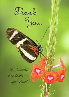 Thank You - Butterfly Art Print