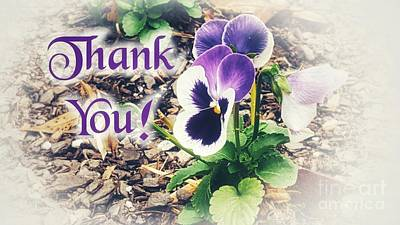 Photograph - Thank You Pansy by Rachel Hannah