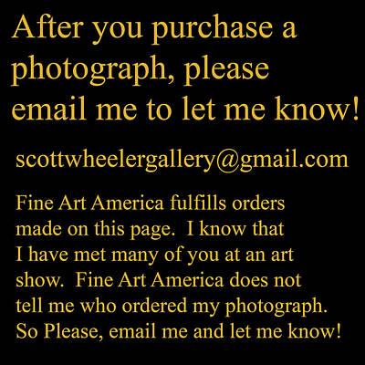 Photograph - Thank You by Scott Wheeler