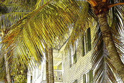 Photograph - That Key West Feeling by Susan Vineyard