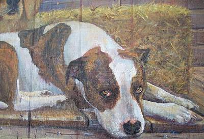Pitbull Painting - That Look by Jody Swope