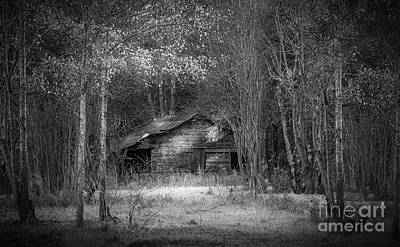 Pine Trees Photograph - That Old Barn-bw by Marvin Spates