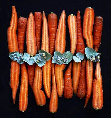 Photograph - That Orange Carrot Glow by Sarah Phillips