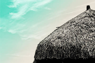 Thatched Hut Art Print