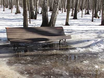 Photograph - Thaw by Anna Yurasovsky