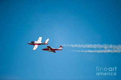 Photograph - The 2 Snowbirds by Wayne Wilton