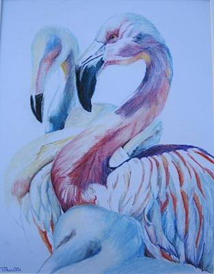Pastel - The 3 Flamingos by Teresa Smith