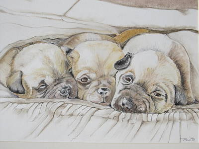 Pastel - The 3 Puppies by Teresa Smith