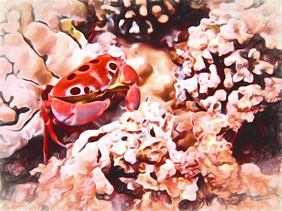 Photograph - The 7-11 Crab by Susan Rissi Tregoning