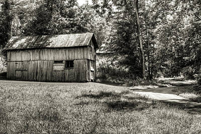 Photograph - The Abandoned Shed In The Shade by Douglas Barnett