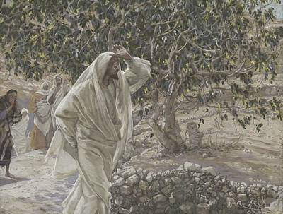 Disciples Painting - The Accursed Fig Tree by Tissot