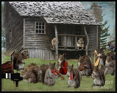 Photograph - The Acorn Squirrel Band by Sandra Clark