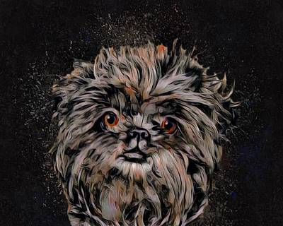 Griffon Digital Art - The Affenpinscher Pup by Scott Wallace
