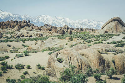 Photograph - The Alabama Hills No.2 by Margaret Pitcher