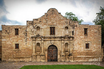 Photograph - The Alamo by Lynn Sprowl