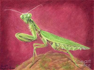 Drawing - The Alien by Monique Castellani-Kraan