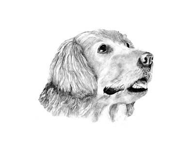 Art Print featuring the drawing The Amanda Look by John Stuart Webbstock