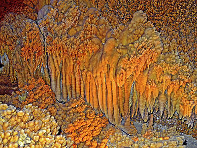 Photograph - The Amazing Crystal Forest 4 by Lynda Lehmann