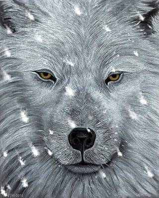 The Amber Eyed Wolf Art Print by Philip Harvey